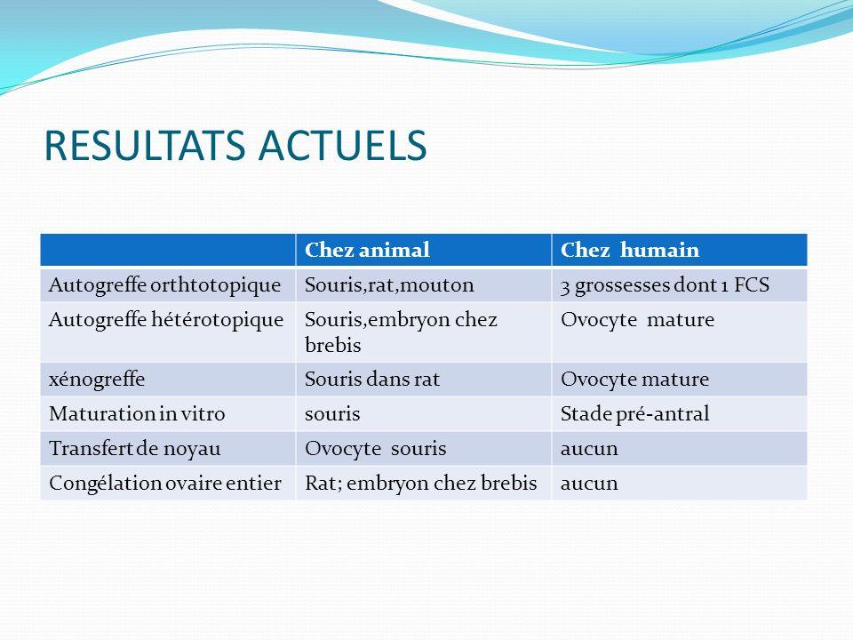 RESULTATS ACTUELS Chez animalChez humain Autogreffe orthtotopiqueSouris,rat,mouton3 grossesses dont 1 FCS Autogreffe hétérotopiqueSouris,embryon chez brebis Ovocyte mature xénogreffeSouris dans ratOvocyte mature Maturation in vitrosourisStade pré-antral Transfert de noyauOvocyte sourisaucun Congélation ovaire entierRat; embryon chez brebisaucun