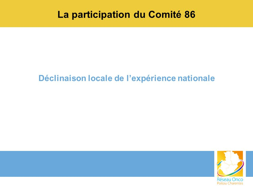 La participation du Comité 86 Déclinaison locale de lexpérience nationale