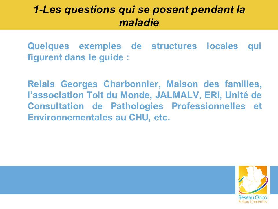Quelques exemples de structures locales qui figurent dans le guide : Relais Georges Charbonnier, Maison des familles, lassociation Toit du Monde, JALM