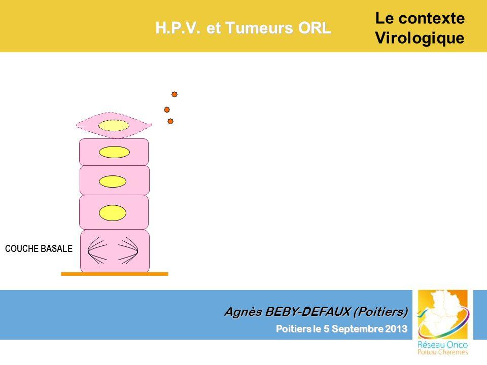Agnès BEBY-DEFAUX (Poitiers) Le contexte Virologique Poitiers le 5 Septembre 2013 H.P.V. et Tumeurs ORL COUCHE BASALE