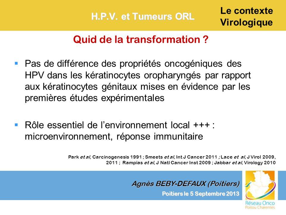 Agnès BEBY-DEFAUX (Poitiers) Le contexte Virologique Poitiers le 5 Septembre 2013 H.P.V. et Tumeurs ORL Quid de la transformation ? Pas de différence