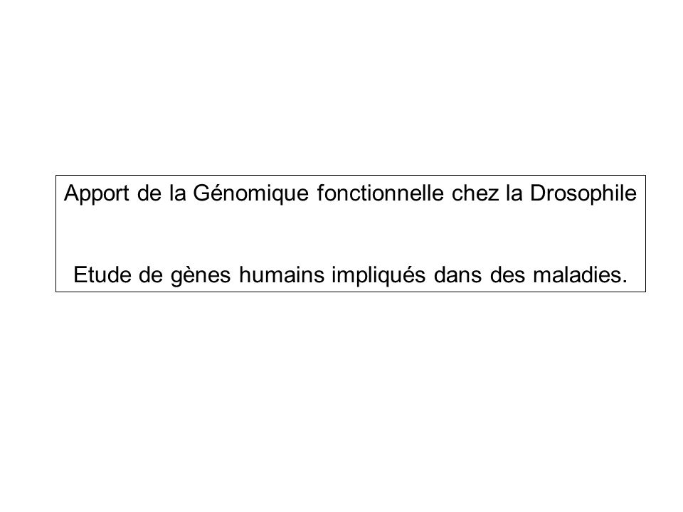 The Berkeley Drosophila Genome Project (BDGP): > 60% (177/289) de gènes humains impliqués dans des pathologies humaines ont des homologues évidents chez la drosophile.