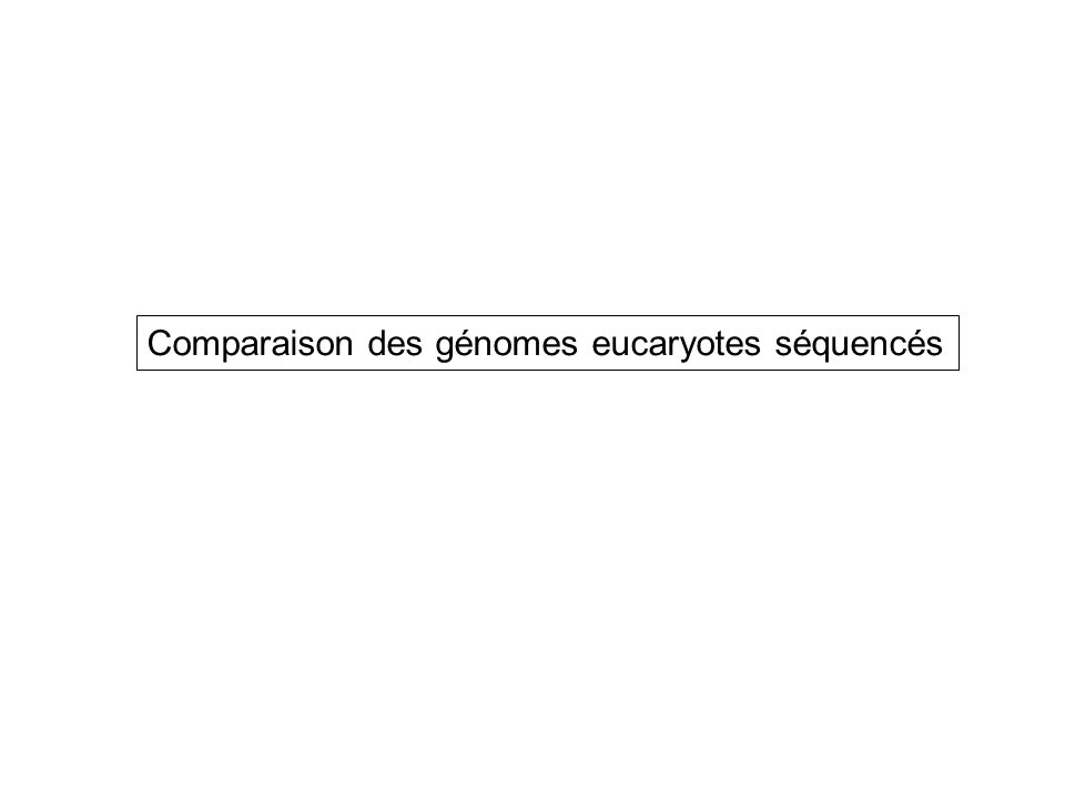 Comparaison des génomes eucaryotes séquencés