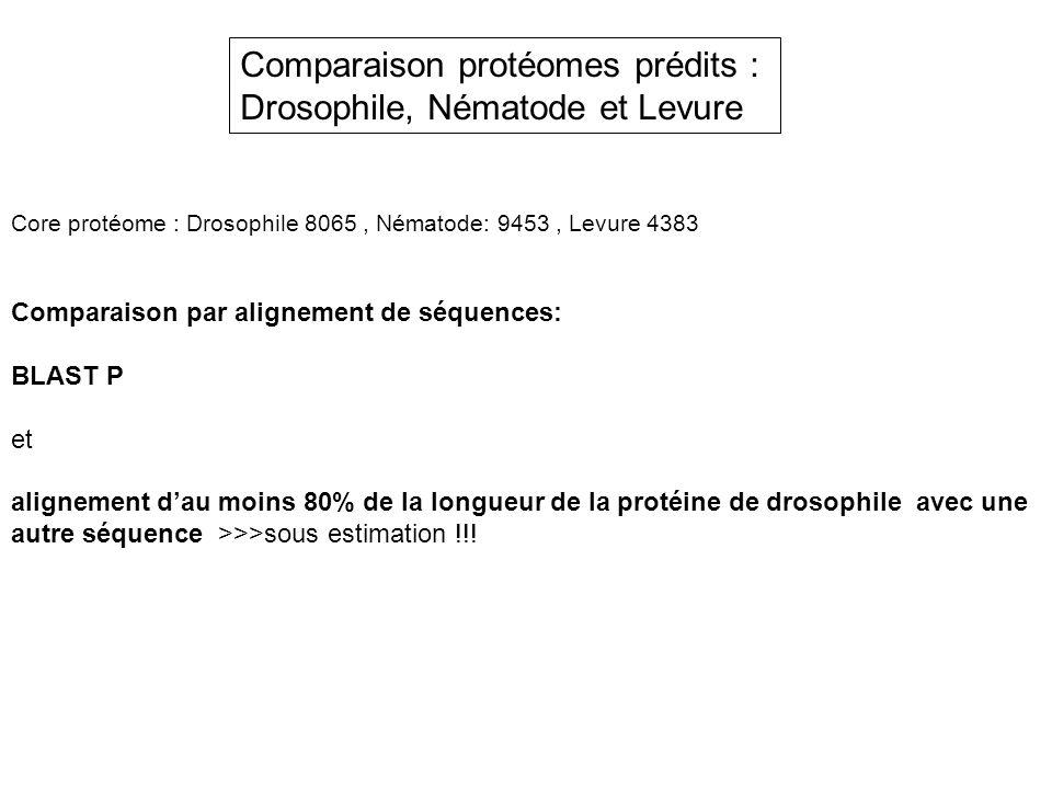 Comparaison protéomes prédits : Drosophile, Nématode et Levure Core protéome : Drosophile 8065, Nématode: 9453, Levure 4383 Comparaison par alignement
