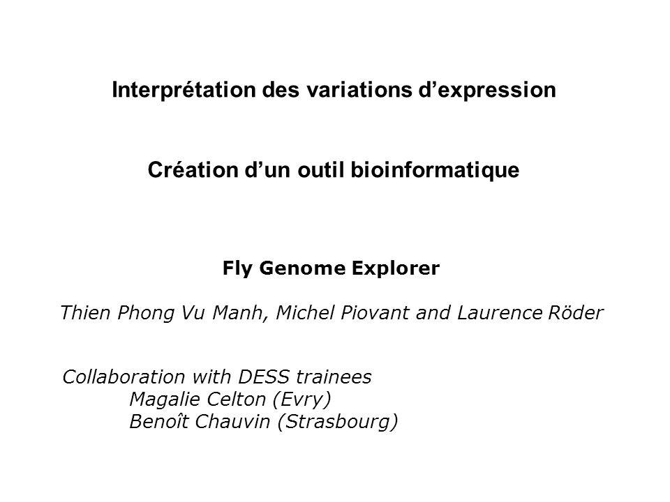 Interprétation des variations dexpression Création dun outil bioinformatique Fly Genome Explorer Thien Phong Vu Manh, Michel Piovant and Laurence Röde