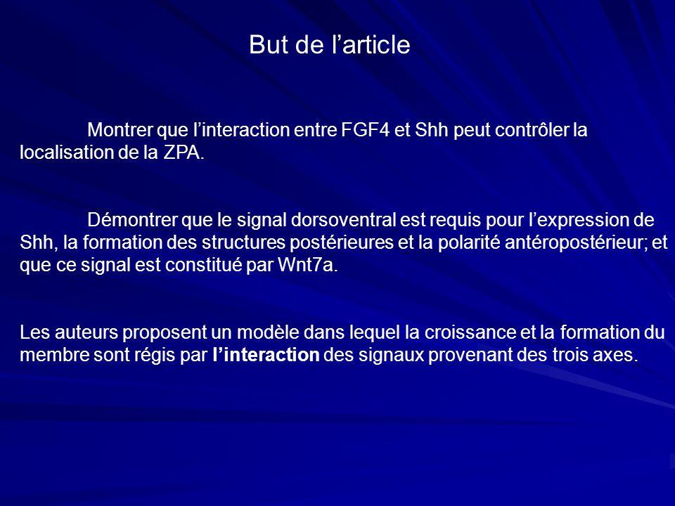 But de larticle Montrer que linteraction entre FGF4 et Shh peut contrôler la localisation de la ZPA. Démontrer que le signal dorsoventral est requis p
