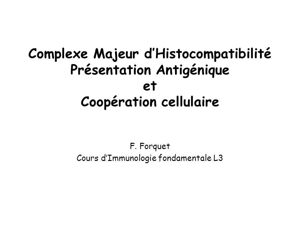 Molécules du CMH Classe IClasse II 6 allèles de molécules de classe I exprimés sur toutes les cellules de lorganisme 6 allèles (chez lhomme) de molécules de classe II exprimés sur les CPA professionnelles