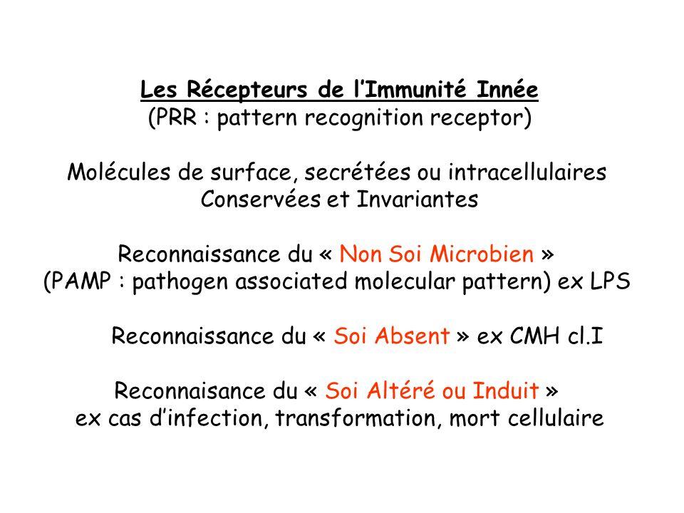 Les Récepteurs de lImmunité Innée (PRR : pattern recognition receptor) Molécules de surface, secrétées ou intracellulaires Conservées et Invariantes R