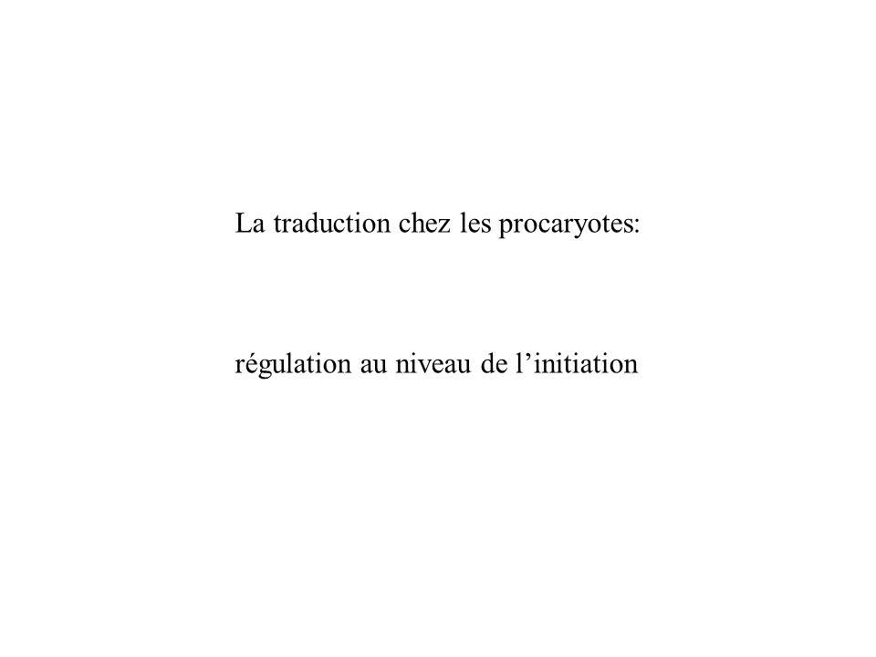 La traduction chez les procaryotes: régulation au niveau de linitiation