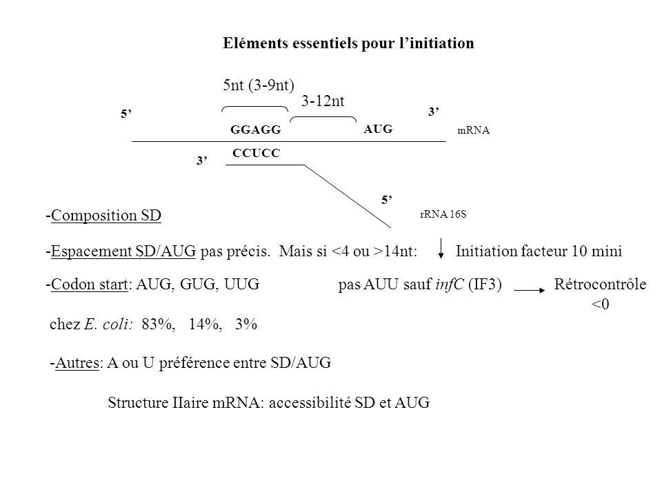 Eléments essentiels pour linitiation 3 mRNA GGAGG AUG 5 rRNA 16S 3 CCUCC 5 5nt (3-9nt) 3-12nt -Espacement SD/AUG pas précis. Mais si 14nt:Initiation f
