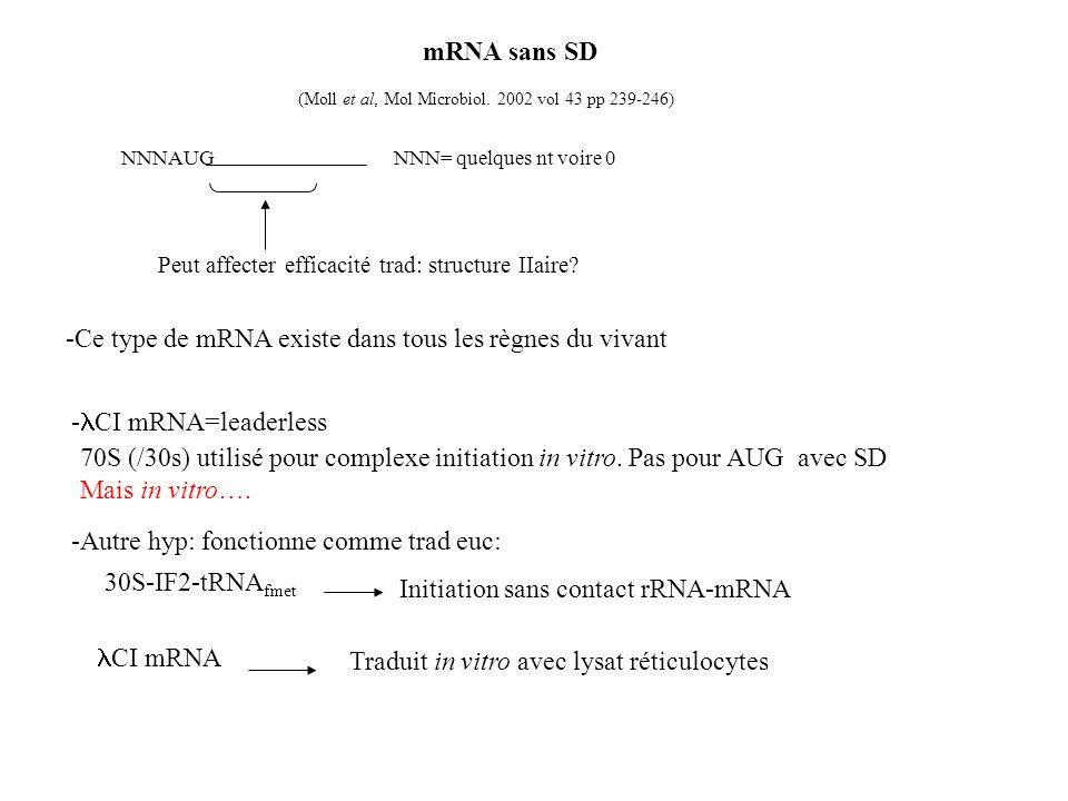 mRNA sans SD (Moll et al, Mol Microbiol. 2002 vol 43 pp 239-246) NNNAUG NNN= quelques nt voire 0 -Ce type de mRNA existe dans tous les règnes du vivan