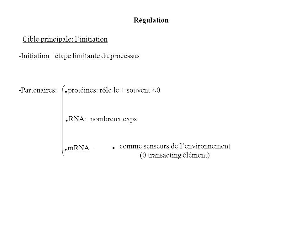 comme senseurs de lenvironnement (0 transacting élément) -Partenaires:. protéines: rôle le + souvent <0. RNA: nombreux exps. mRNA Régulation Cible pri