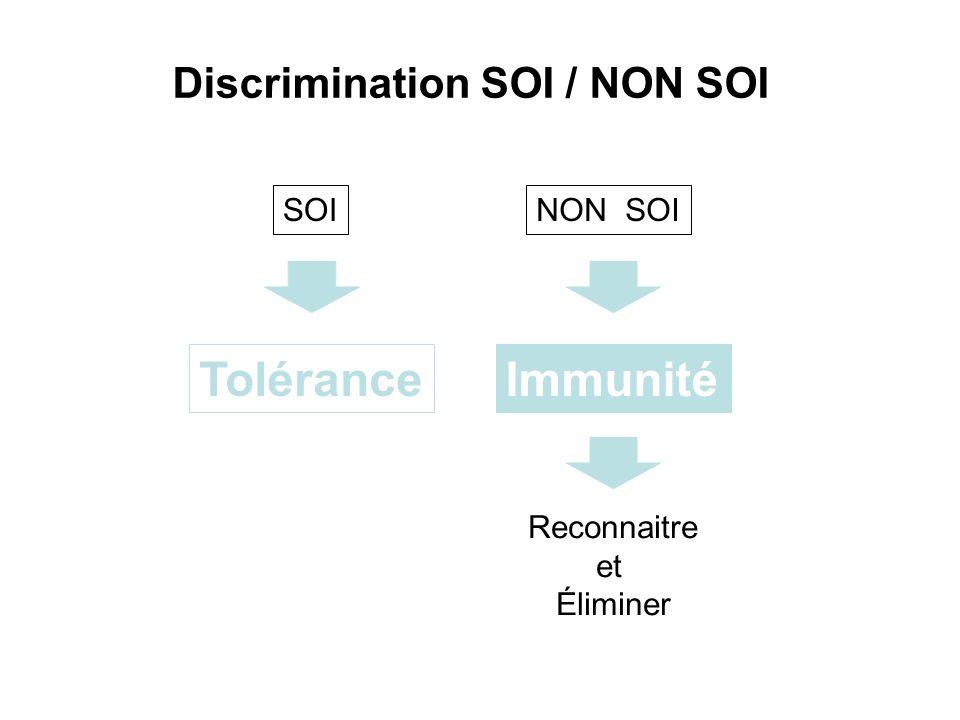 ToléranceImmunité Discrimination SOI / NON SOI Reconnaitre et Éliminer SOINON SOI