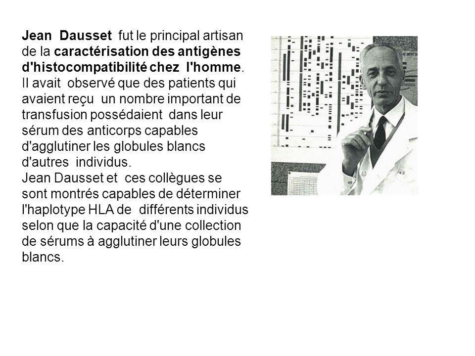 Jean Dausset fut le principal artisan de la caractérisation des antigènes d'histocompatibilité chez l'homme. Il avait observé que des patients qui ava