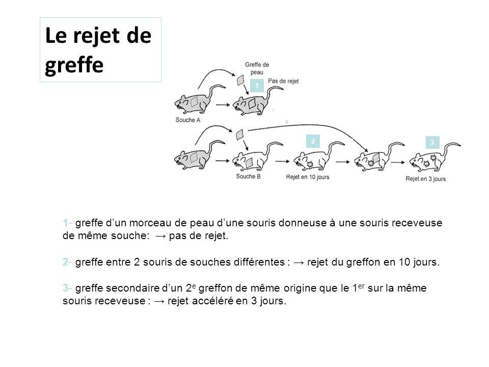 antiserum Rejet en 10 jours Le rejet de greffe 4- Distinction entre les greffons des souches A et C Rejet de A2 en 3 j mais rejet de C1 en 10 j 1 2 3 4