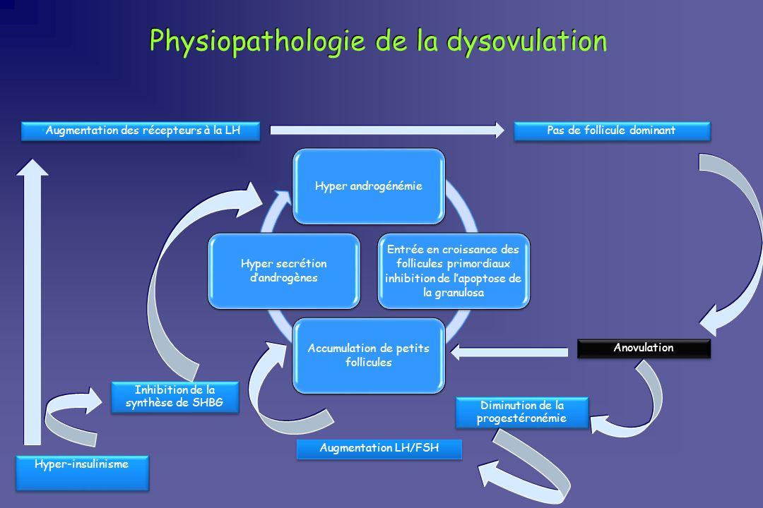 Physiopathologie de la dysovulation Hyper androgénémie Entrée en croissance des follicules primordiaux inhibition de lapoptose de la granulosa Accumul