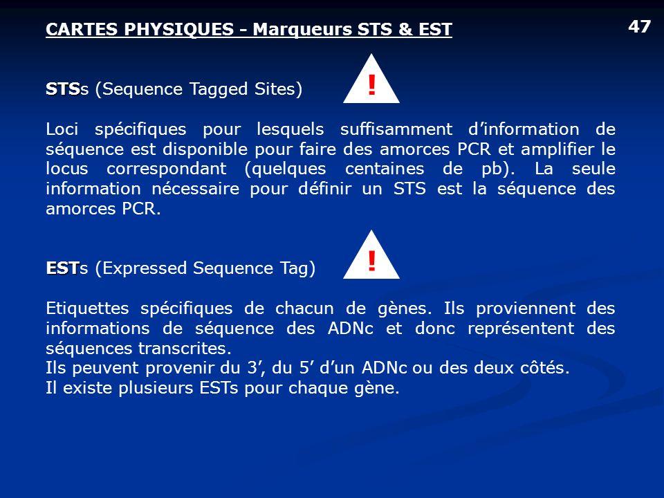 CARTES PHYSIQUES - Marqueurs STS & EST STS STSs (Sequence Tagged Sites) Loci spécifiques pour lesquels suffisamment dinformation de séquence est dispo