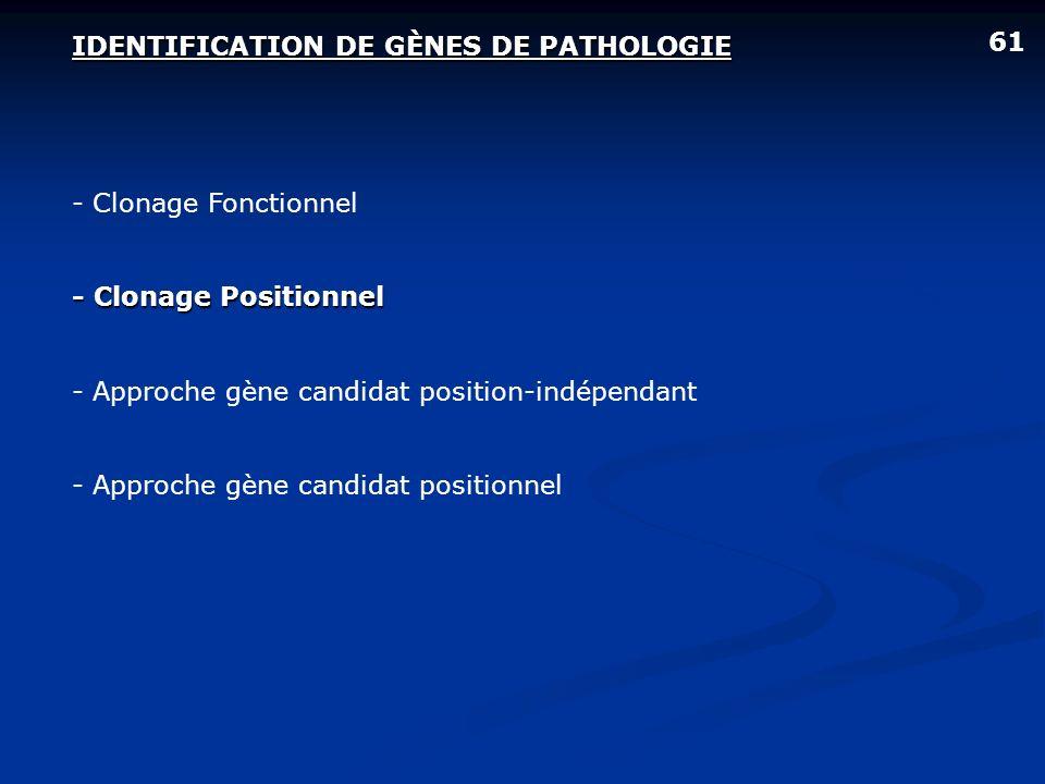 IDENTIFICATION DE GÈNES DE PATHOLOGIE - Clonage Fonctionnel - Clonage Positionnel - Approche gène candidat position-indépendant - Approche gène candid