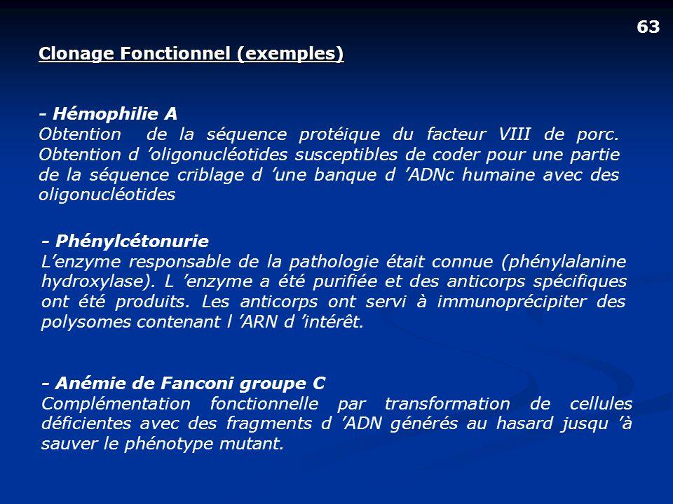 Clonage Fonctionnel (exemples) - Hémophilie A Obtention de la séquence protéique du facteur VIII de porc. Obtention d oligonucléotides susceptibles de