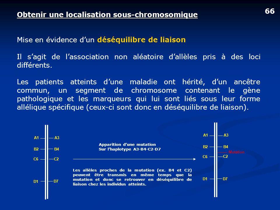 66 Obtenir une localisation sous-chromosomique Mise en évidence dun déséquilibre de liaison Il sagit de lassociation non aléatoire dallèles pris à des