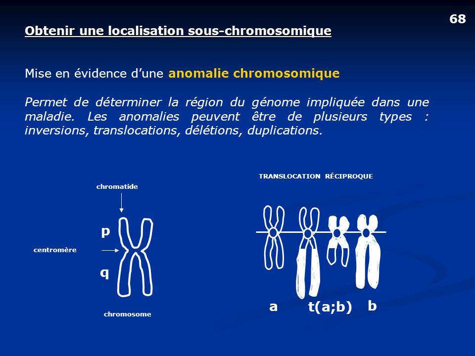68 Obtenir une localisation sous-chromosomique Mise en évidence dune anomalie chromosomique Permet de déterminer la région du génome impliquée dans un
