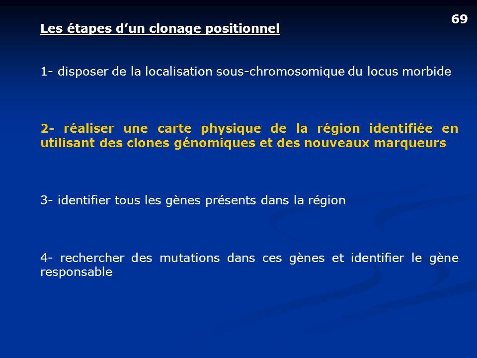 69 Les étapes dun clonage positionnel 1- disposer de la localisation sous-chromosomique du locus morbide 2- réaliser une carte physique de la région i