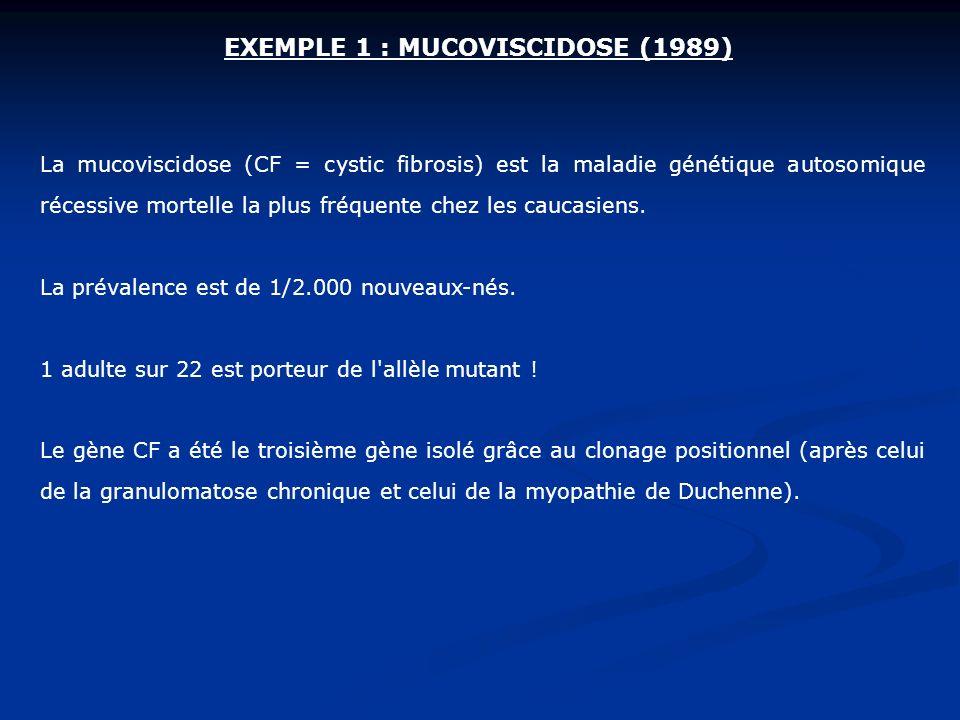 EXEMPLE 1 : MUCOVISCIDOSE (1989) La mucoviscidose (CF = cystic fibrosis) est la maladie génétique autosomique récessive mortelle la plus fréquente che