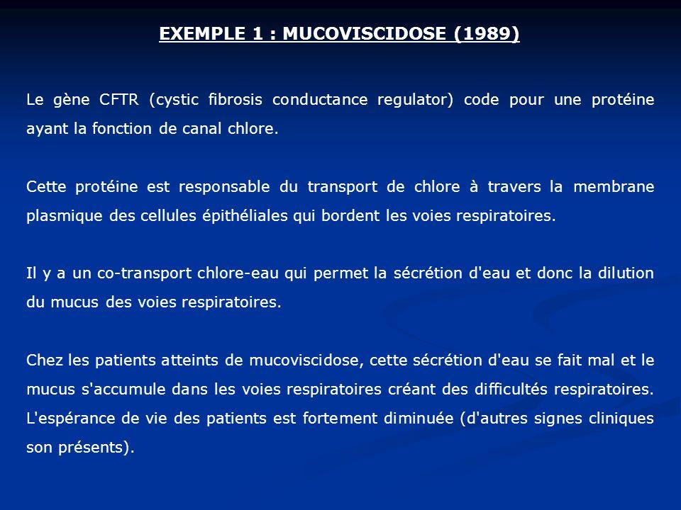 Le gène CFTR (cystic fibrosis conductance regulator) code pour une protéine ayant la fonction de canal chlore. Cette protéine est responsable du trans