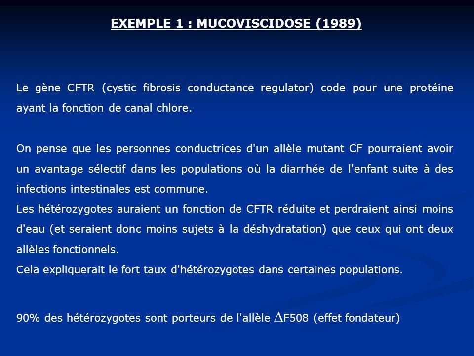Le gène CFTR (cystic fibrosis conductance regulator) code pour une protéine ayant la fonction de canal chlore. On pense que les personnes conductrices