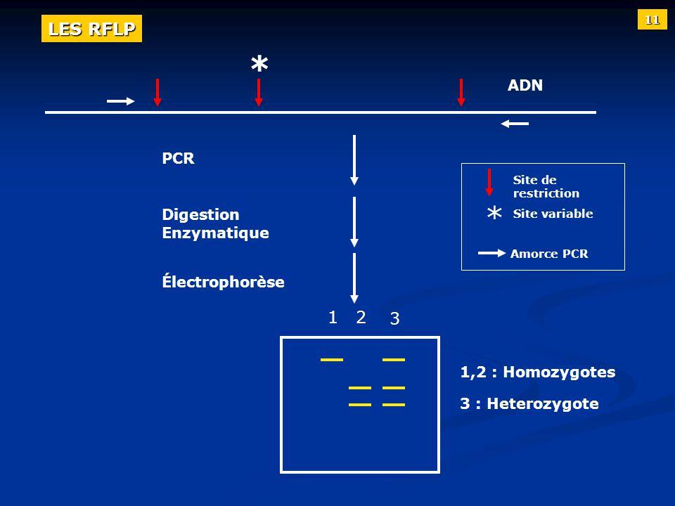 ADN PCR Digestion Enzymatique Électrophorèse Site de restriction Site variable Amorce PCR 1,2 : Homozygotes 3 : Heterozygote * * 12 3 11 LES RFLP