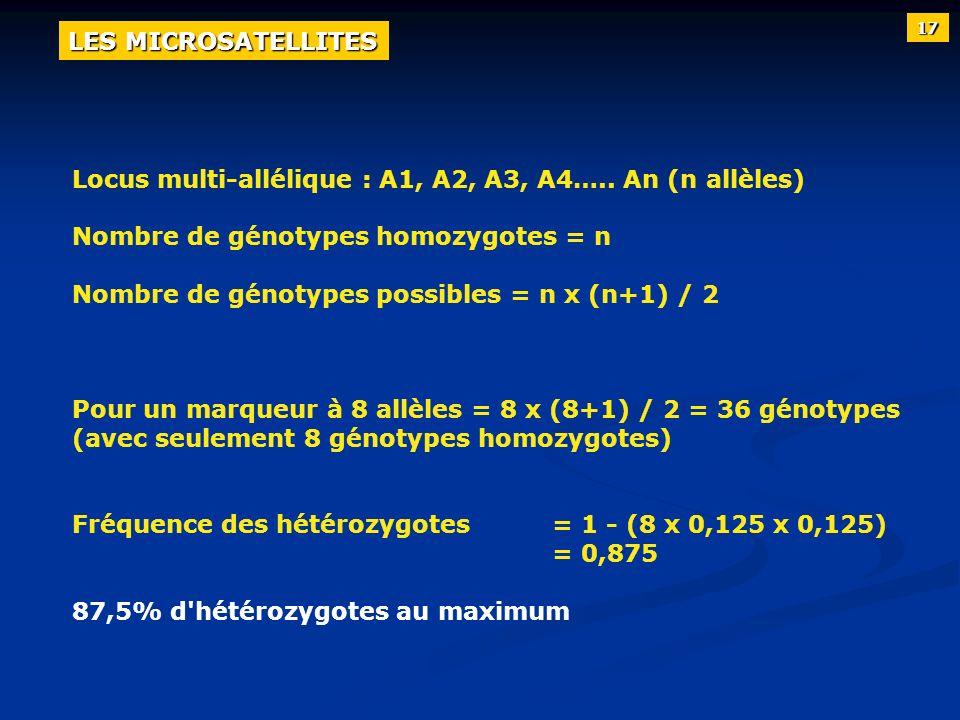 Locus multi-allélique : A1, A2, A3, A4….. An (n allèles) Nombre de génotypes homozygotes = n Nombre de génotypes possibles = n x (n+1) / 2 Pour un mar