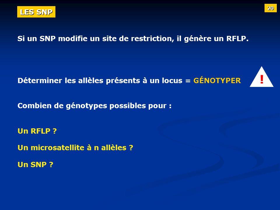 Si un SNP modifie un site de restriction, il génère un RFLP. Déterminer les allèles présents à un locus = GÉNOTYPER Combien de génotypes possibles pou