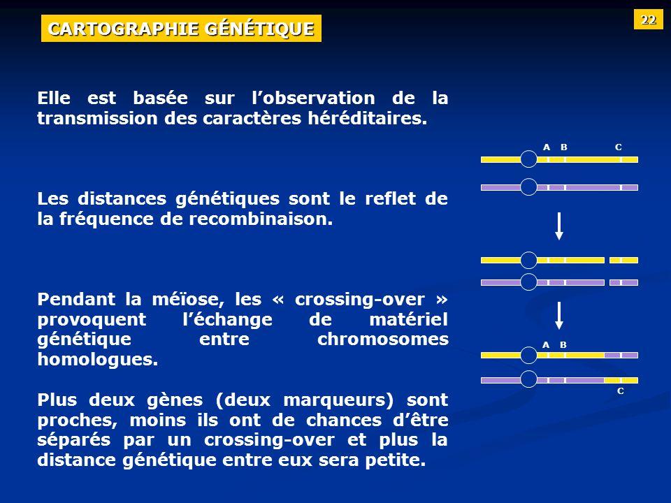 Elle est basée sur lobservation de la transmission des caractères héréditaires. Les distances génétiques sont le reflet de la fréquence de recombinais