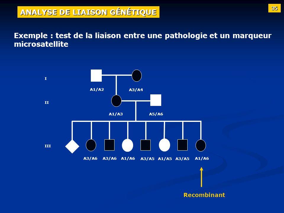 I II III A1/A2 A3/A4 A1/A3A5/A6 A3/A6 A3/A5 A1/A6 Recombinant A1/A5 35 ANALYSE DE LIAISON GÉNÉTIQUE Exemple : test de la liaison entre une pathologie