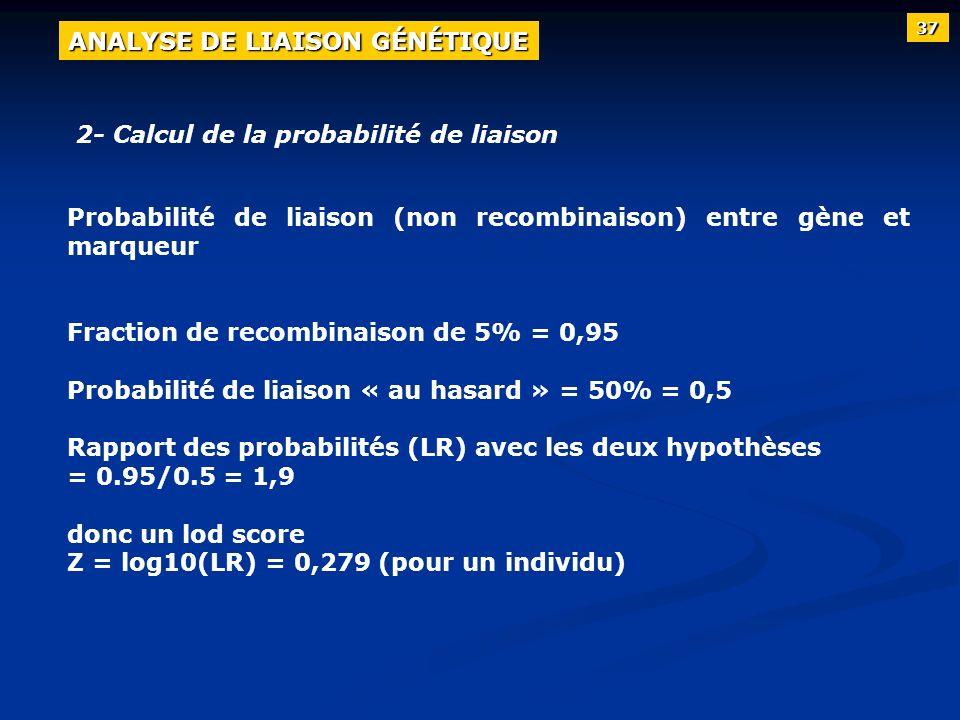2- Calcul de la probabilité de liaison Probabilité de liaison (non recombinaison) entre gène et marqueur Fraction de recombinaison de 5% = 0,95 Probab