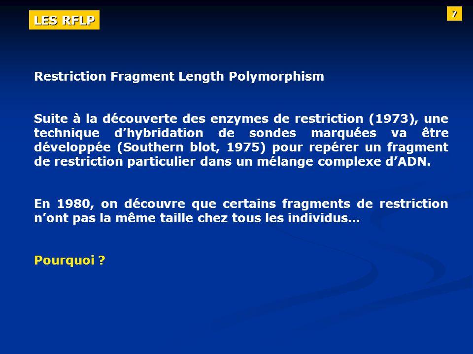 Restriction Fragment Length Polymorphism Suite à la découverte des enzymes de restriction (1973), une technique dhybridation de sondes marquées va êtr