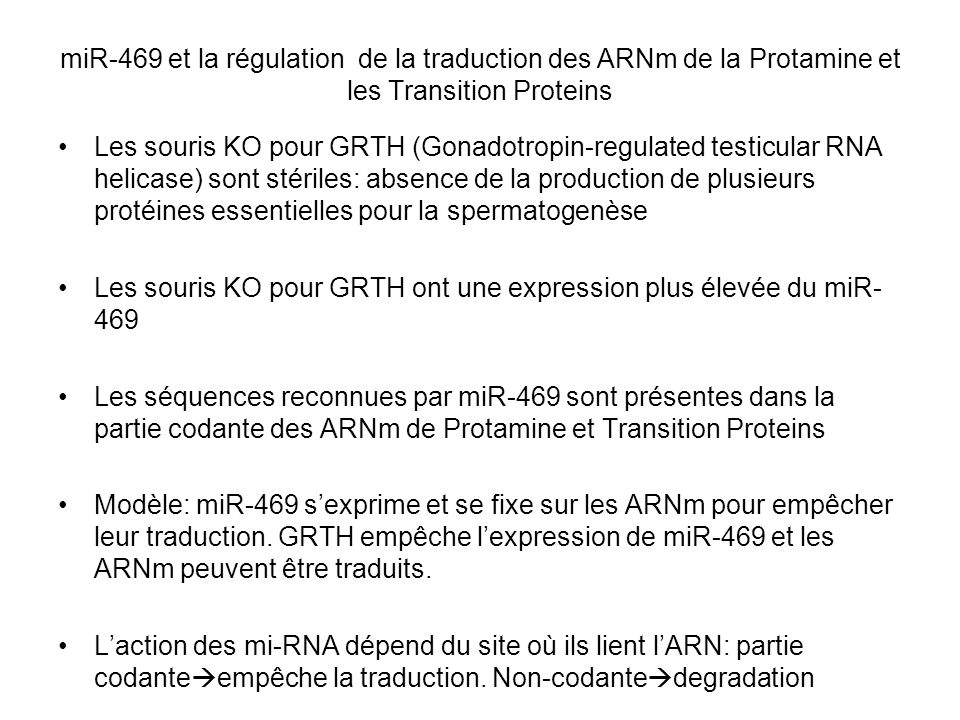 miR-469 et la régulation de la traduction des ARNm de la Protamine et les Transition Proteins Les souris KO pour GRTH (Gonadotropin-regulated testicul
