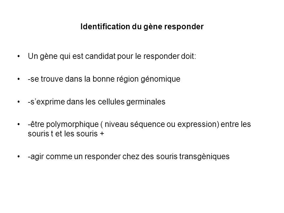 Identification du Responder :1.Le reponder se trouve où dans le complexe-t.