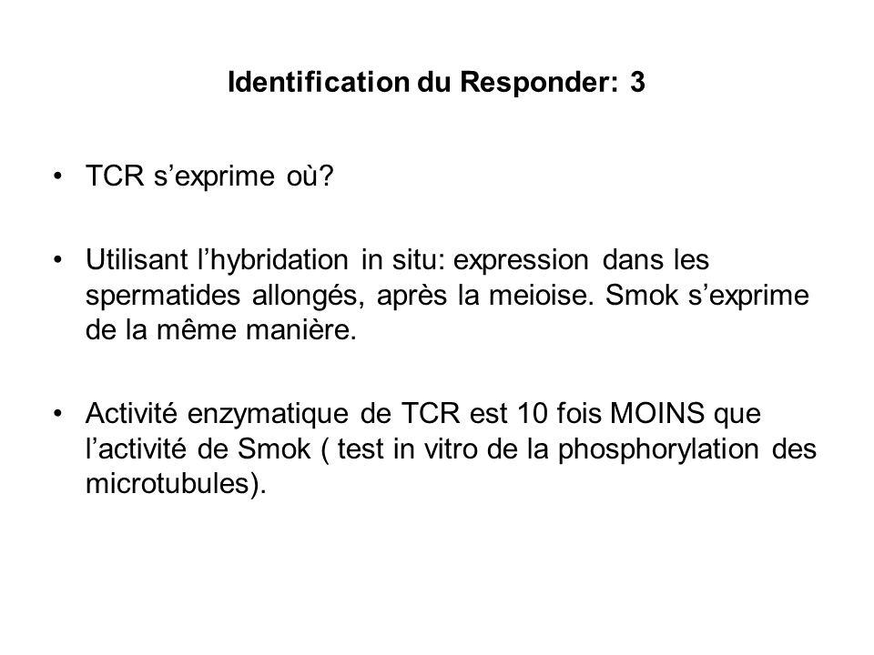 Test pour lactivité Responder Utilise une souris transgènique pour TCR: le TCR se trouve sur le Y Croisement avec une femelle qui porte les distorters mais pas le responder.