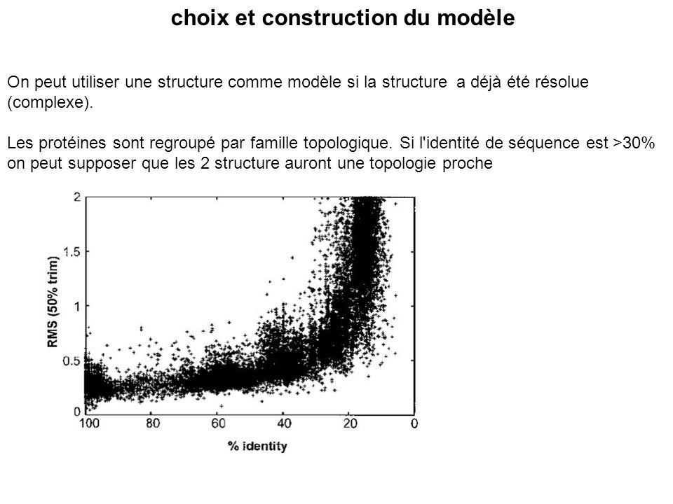 choix et construction du modèle On peut utiliser une structure comme modèle si la structure a déjà été résolue (complexe). Les protéines sont regroupé