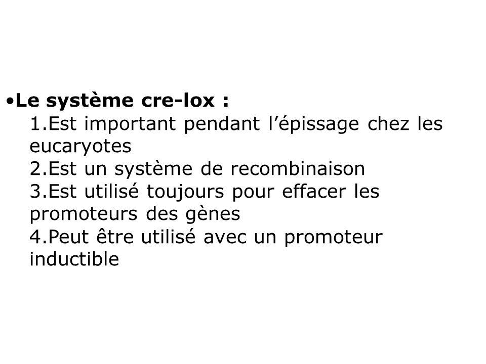 Le système cre-lox : 1.Est important pendant lépissage chez les eucaryotes 2.Est un système de recombinaison 3.Est utilisé toujours pour effacer les p