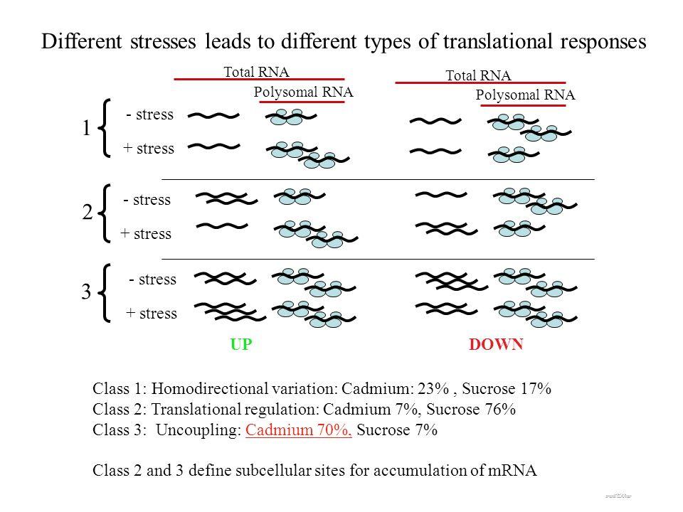 Class 1: Homodirectional variation: Cadmium: 23%, Sucrose 17% Class 2: Translational regulation: Cadmium 7%, Sucrose 76% Class 3: Uncoupling: Cadmium