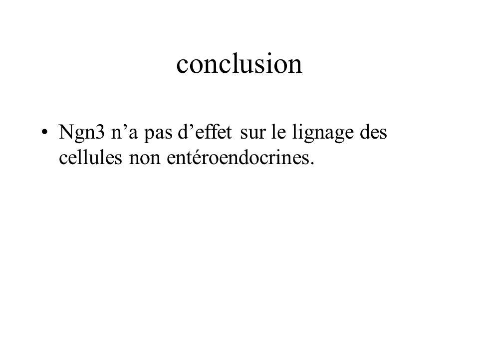 conclusion Ngn3 na pas deffet sur le lignage des cellules non entéroendocrines.