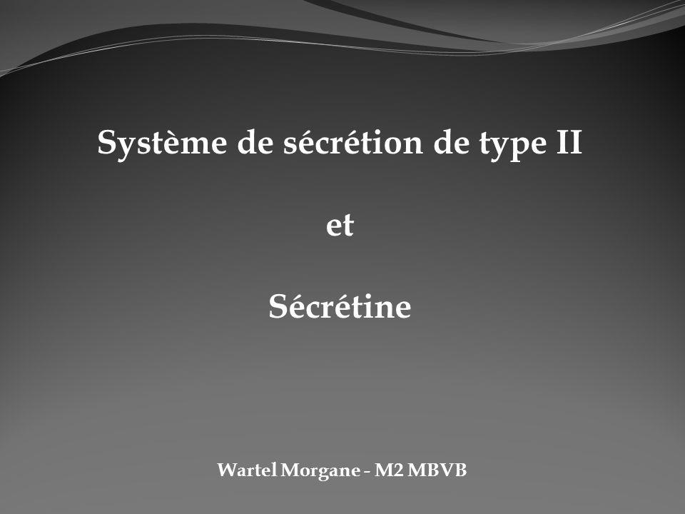 Wartel Morgane - M2 MBVB Système de sécrétion de type II et Sécrétine