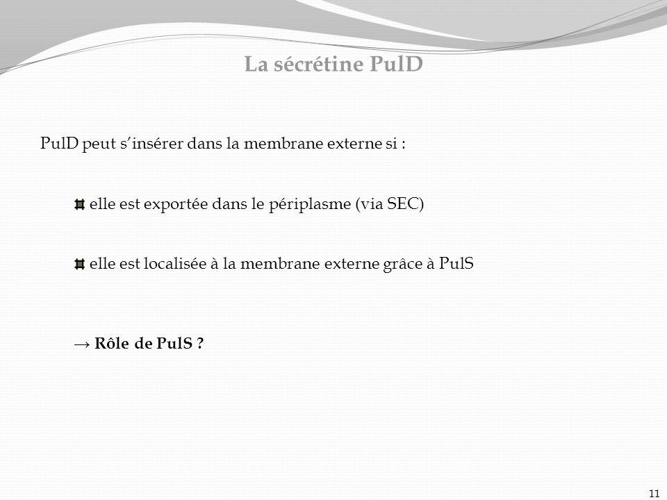 PulD peut sinsérer dans la membrane externe si : elle est exportée dans le périplasme (via SEC) elle est localisée à la membrane externe grâce à PulS