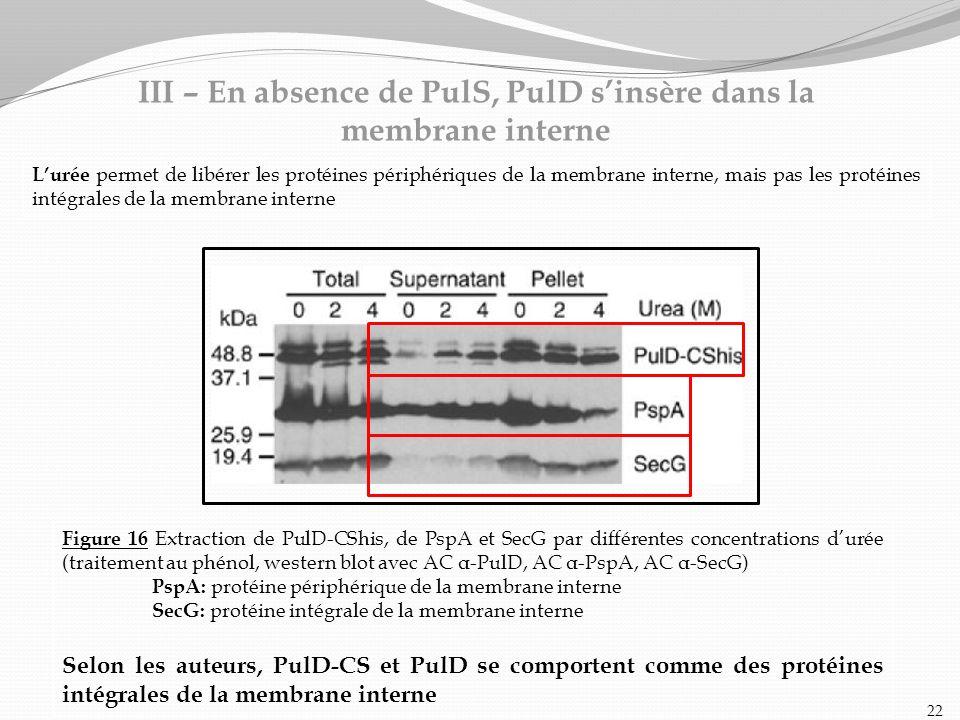 Figure 16 Extraction de PulD-CShis, de PspA et SecG par différentes concentrations durée (traitement au phénol, western blot avec AC α-PulD, AC α-PspA