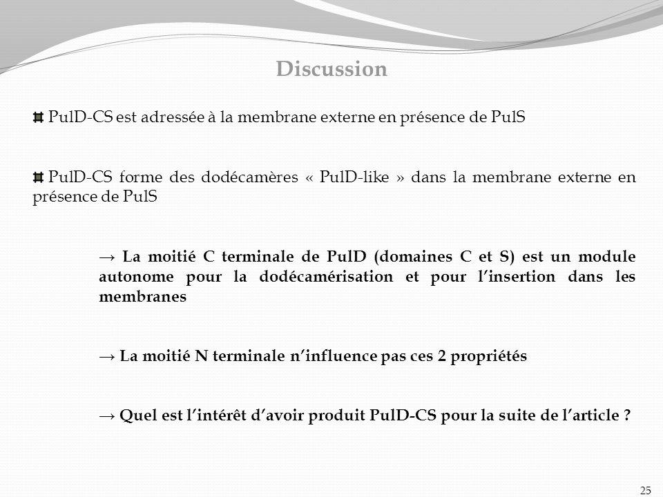 PulD-CS est adressée à la membrane externe en présence de PulS PulD-CS forme des dodécamères « PulD-like » dans la membrane externe en présence de Pul