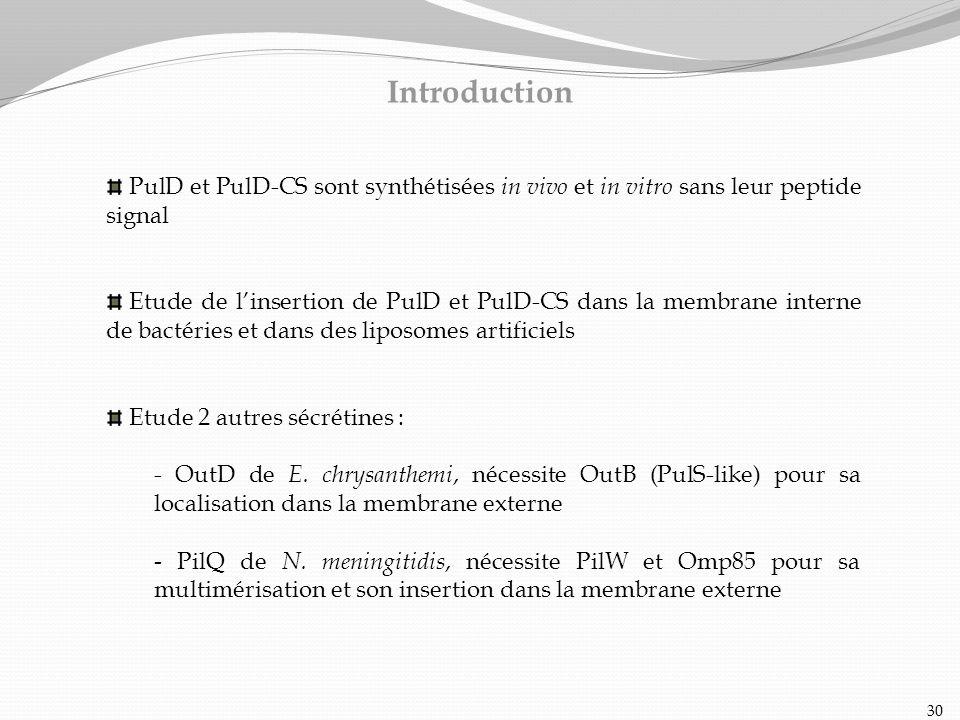 PulD et PulD-CS sont synthétisées in vivo et in vitro sans leur peptide signal Etude de linsertion de PulD et PulD-CS dans la membrane interne de bact