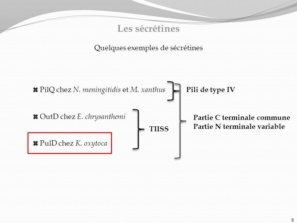 8 Les sécrétines Quelques exemples de sécrétines PilQ chez N. meningitidis et M. xanthus OutD chez E. chrysanthemi PulD chez K. oxytoca Partie C termi
