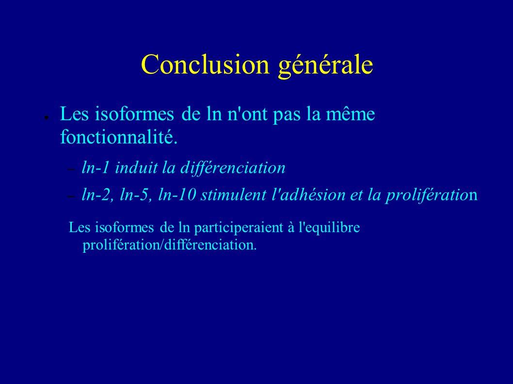 conclusion Cdx-2 induit la différenciation des cellules intestinales